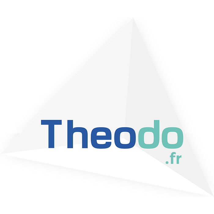 theodo-sml-fr.png